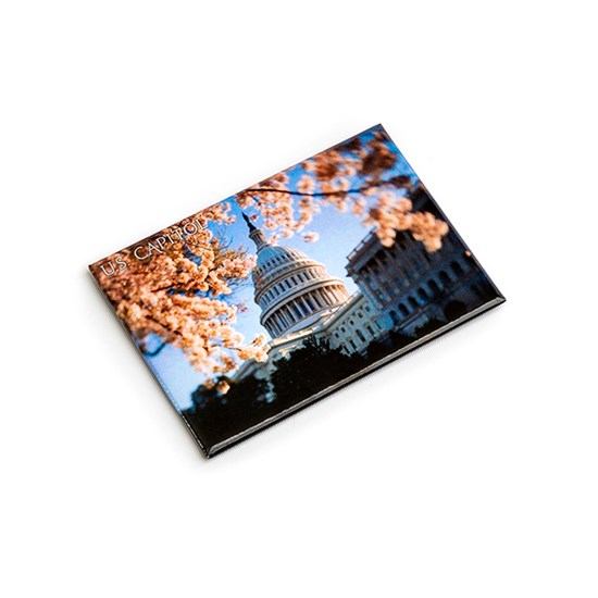 Cherry_US_Capitol_Magnet
